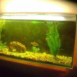 Продам аквариум 200 литров без крышки.